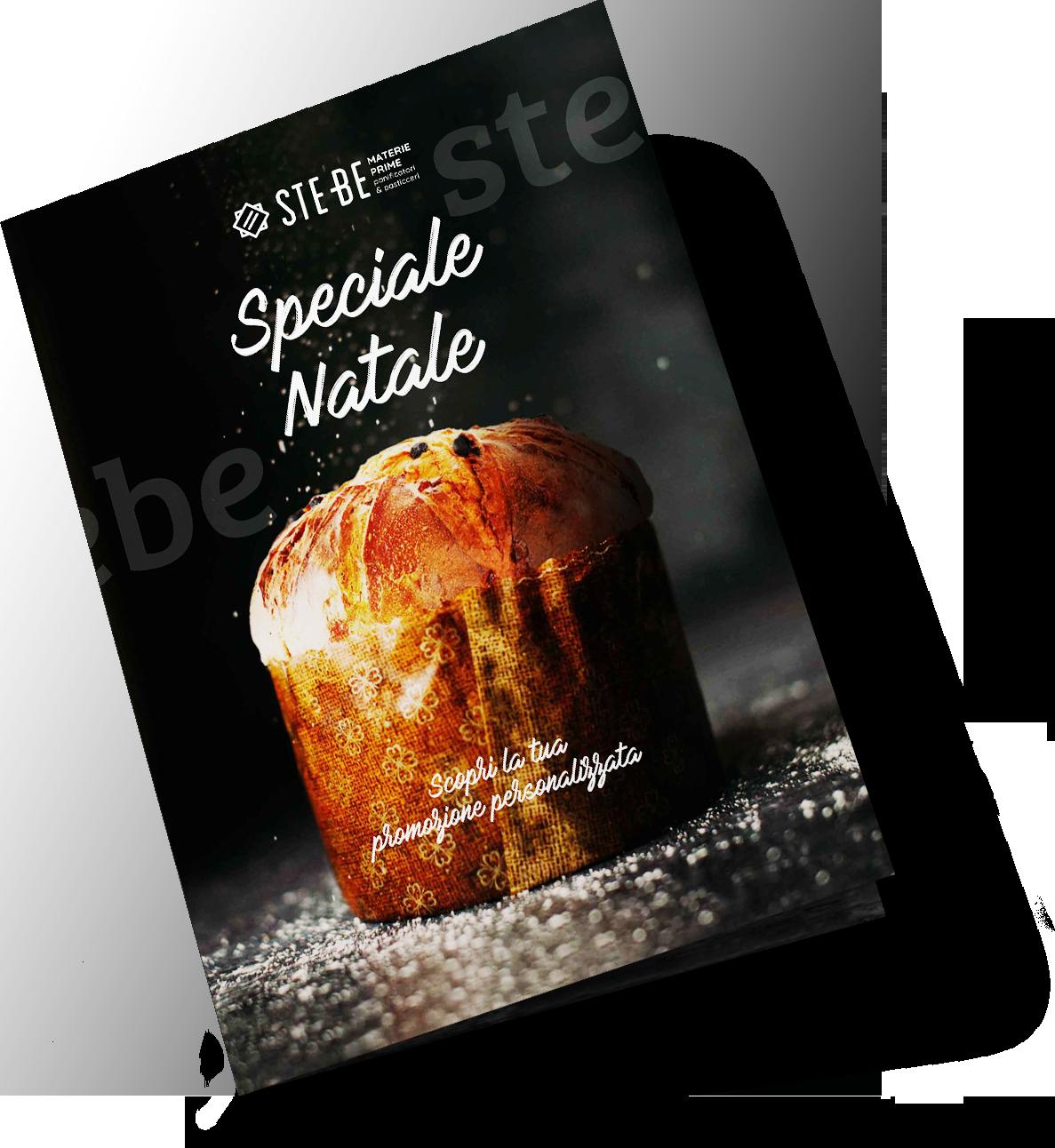 a3 half-fold brochure mockup 01